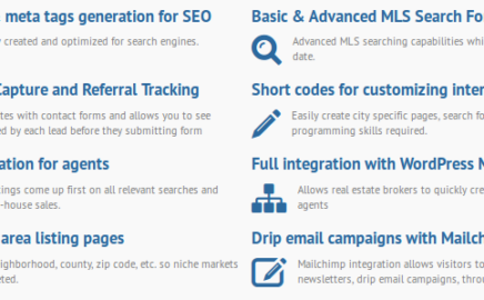 We Build Custom IDX Websites